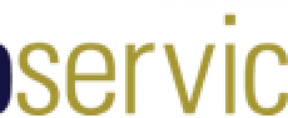 DB Services Logo