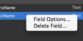 Field Options in FileMaker 13