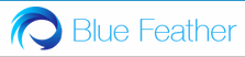 Bluefeather Group Logo