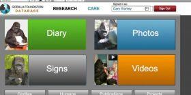 FilGorilla Foundation using an FileMaker on an iPad
